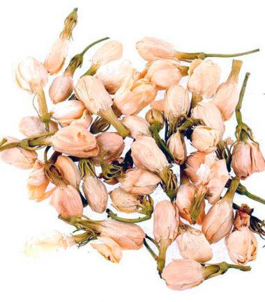 Flores-de-Jazmin-Hierbalia