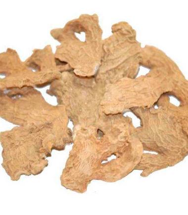 jengibre-raiz-entera-Hierbalia