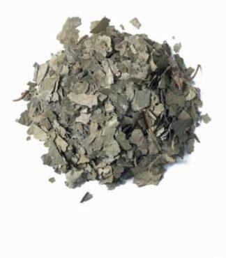 Comprar-abedul-hojas-Hierbalia